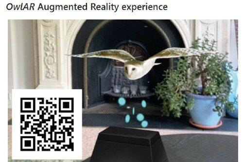 Flugzeugdesign: Was man vom Vogelflug lernen kann